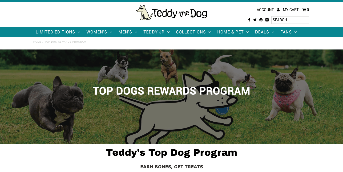 teddy the dog's top dogs explainer page