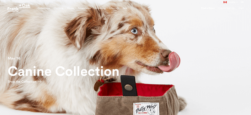 frank + oak canine collection