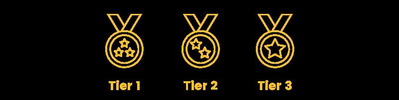 b2b loyalty program tier levels
