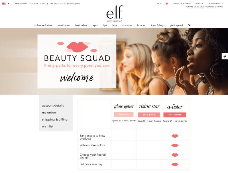 customer segmentation brand loyalists experiential rewards elf