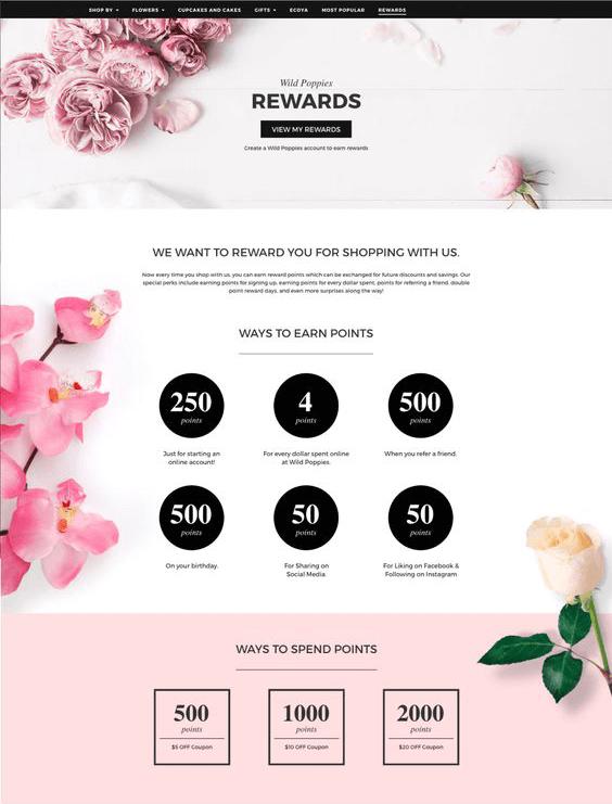 Wild Poppies Program Explainer Page