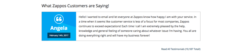 Best Customer Experiences Zappos Customer Review