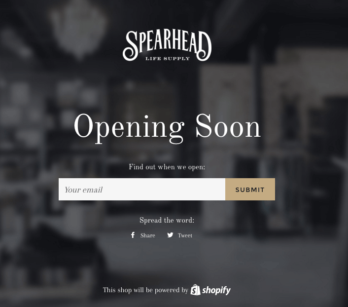 ecommerce idea spearhead